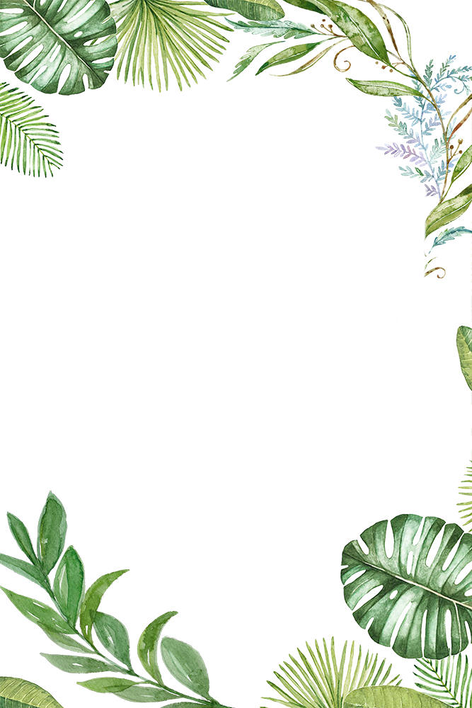 Jungle Leaf Png Plants Tropical Jungle Leaves Border Frame Ftestickers Tropical Leaves Png 749141 Vippng Find over 100+ of the best free tropical jungle images. plants tropical jungle leaves border