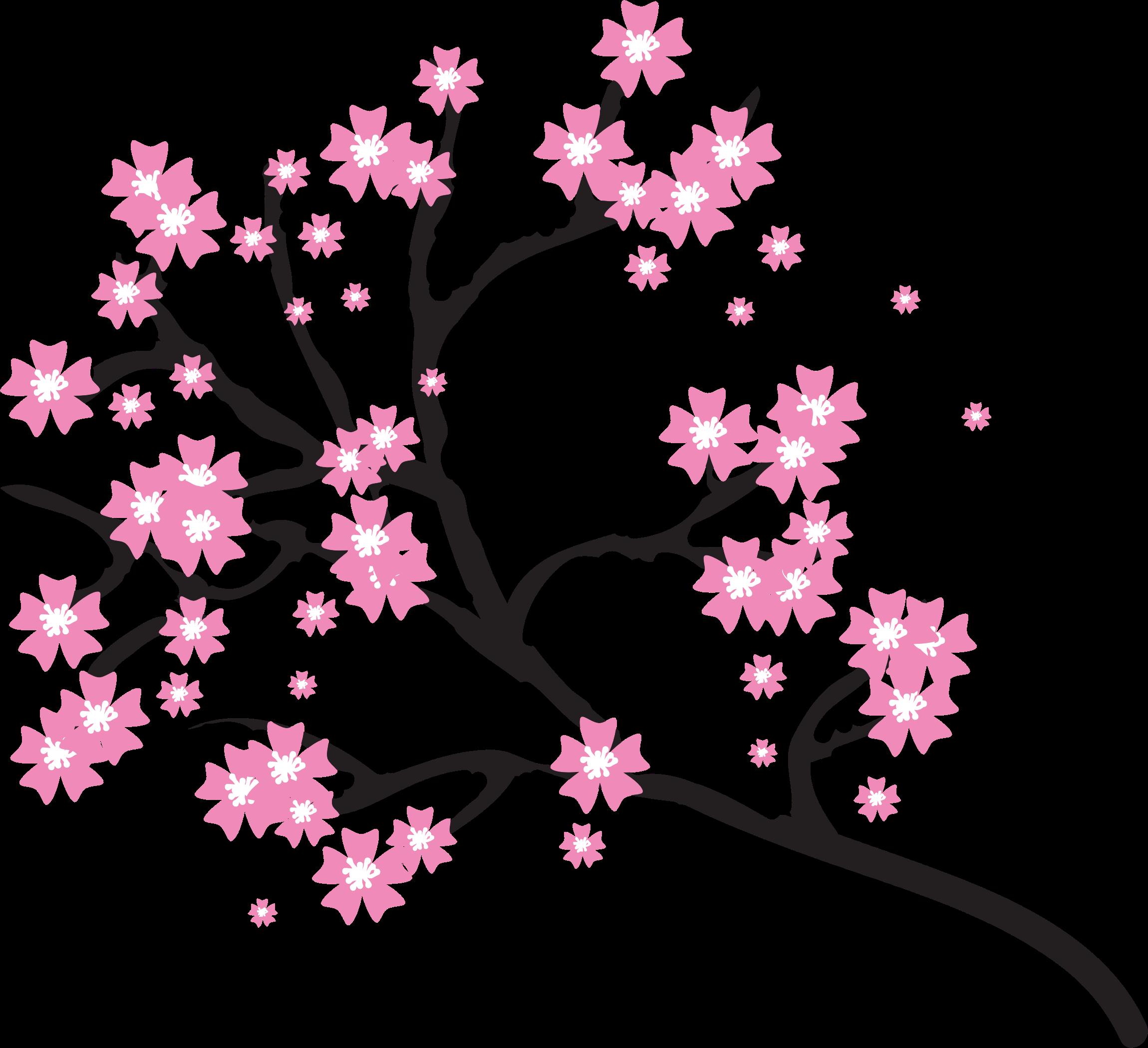 50+ Cherry Blossom Transparent Background Flower Png - さととめ