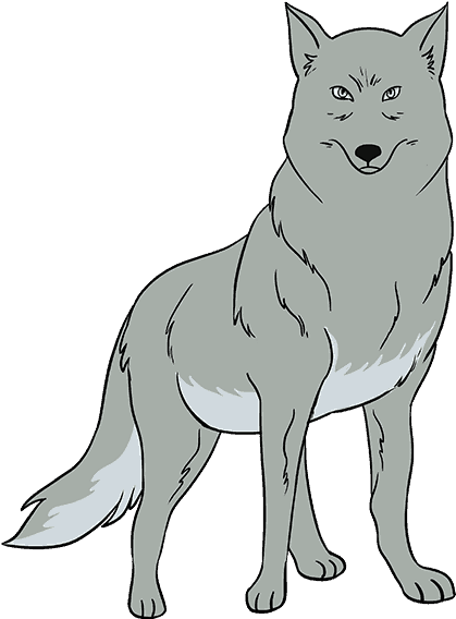 Wolf Face Png How To Draw Wolf Gray Wolf Easy Drawing 821018 Vippng